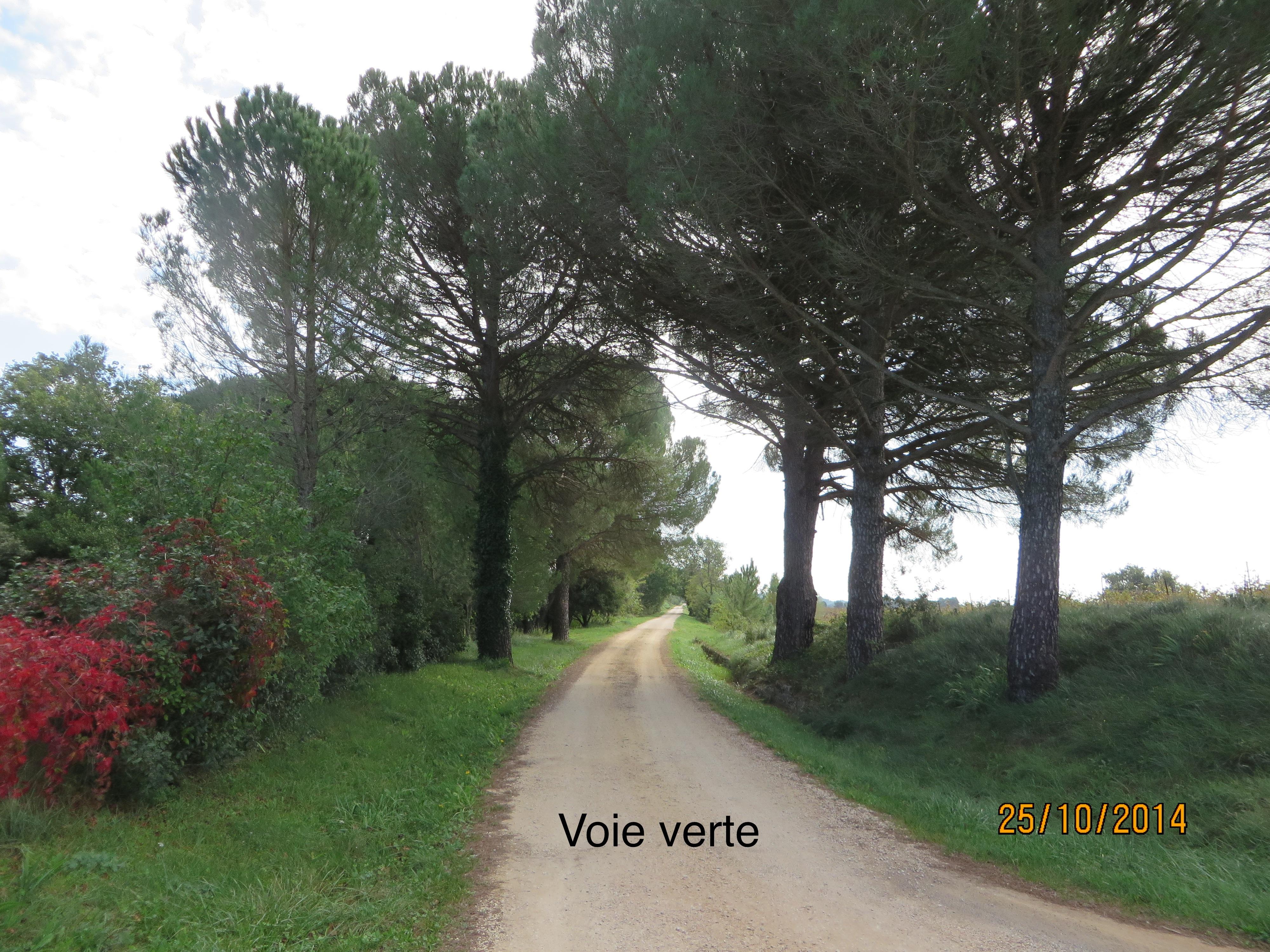 IMG_0774 VF u00E0 St-Jean de C.
